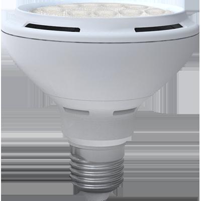 LED Skylighting PAR30 12W E27 3000K
