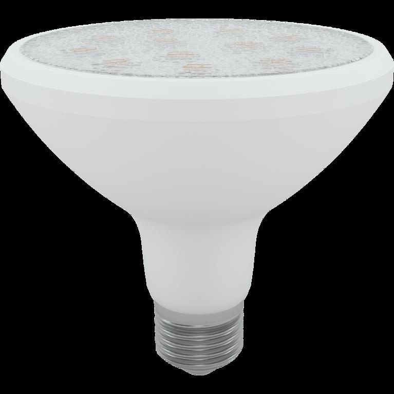LED Skylighting PAR38 18W E27 4200K